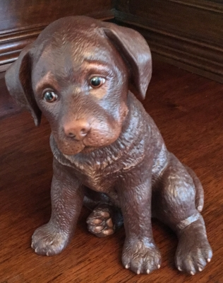 Lenox Chocolate Laborador Retriever Puppy