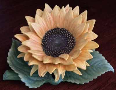 Lenox Sunflower